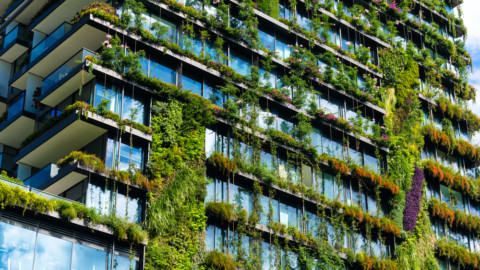 National Green Infrastructure Strategy would benefit cities