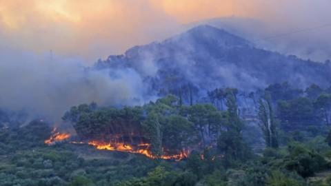 Firefighters urge Queenslanders to prepare their bushfire plans