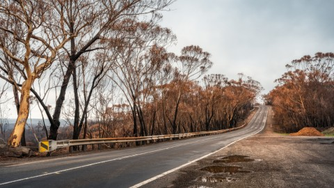 Bushfire damage repairs complete on NSW road network