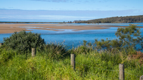 $51.2 million invested in Eurobodalla Southern Water Storage project