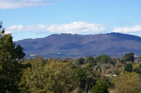 Healesville Freeway Reserve gets a green revamp